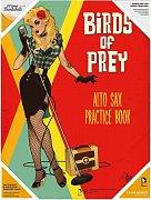DC Comics Bombshells Glass Poster Birds Of Prey 30 x 40 cm