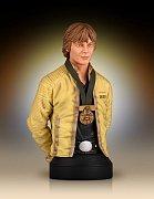 Star Wars Bust 1/6 Luke Skywalker Hero of Yavin 17 cm