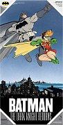The Dark Knight Returns Glass Poster Batman & Robin 60 x 30 cm