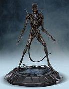 Alien Covenant Statue 1/4 Xenomorph 69 cm