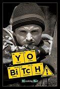 Breaking Bad plakát  Pack Yo Bitch! 61 x 91 cm (5)
