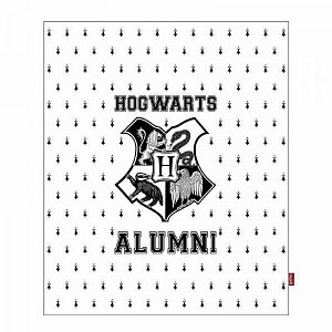 Harry Potter Throw Hogwarts Alumni 125 x 150 cm - 1