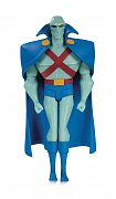 Justice League The Animated Series Action Figure Martian Manhunter 16 cm --- DAMAGED PACKAGING
